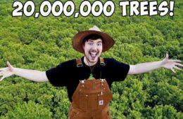 600 youtubeurs pour 20 millions darbres