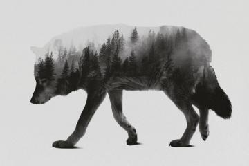 ArtWorkByLie, les créations inspirées de la Norvège