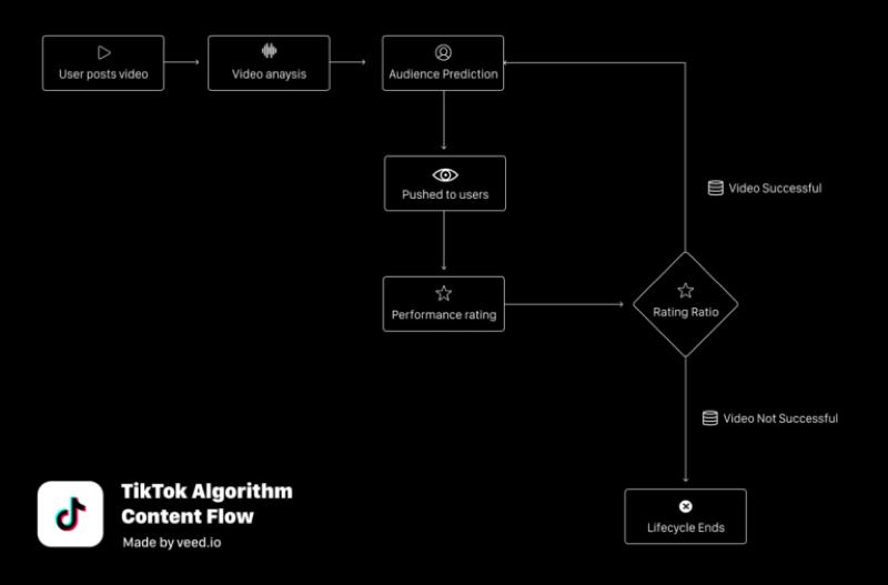 TikTok algorithme