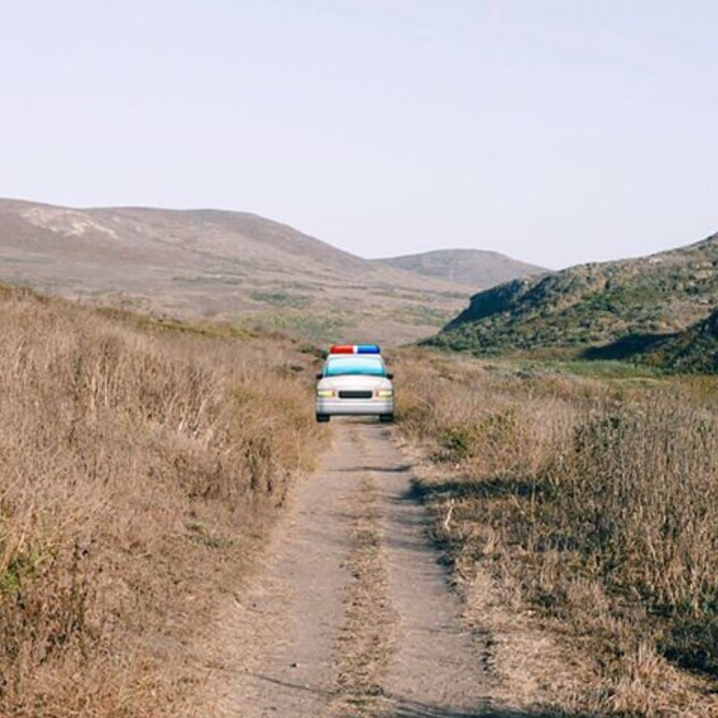 Brad Warsh projet Emoji IRL car