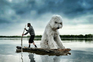 ChristopherCline, les aventures de Juji le chien géant
