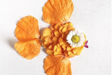 Flora.Florager, les compositions florales
