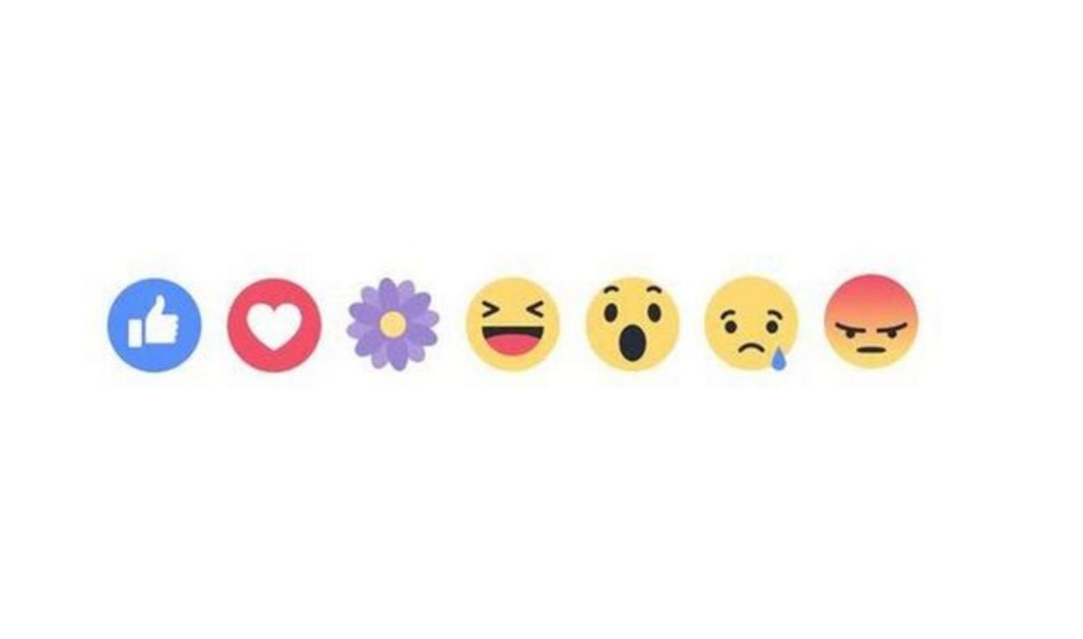 Que Signifie Le Nouvel Emoji Fleur Violette Sur Facebook Influenth